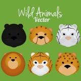 Wektorowa kreskówka Ustawiająca Śliczne Dzikie kot twarze Odizolowywać Zdjęcia Stock