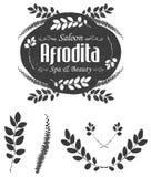Wektorowa kwiecista logo etykietka z teksturą, oddzielnymi kwiecistymi gałąź i liście Obraz Stock
