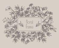 Wektorowa Kwiecista rama z kwiatami, gałąź, liście Obraz Royalty Free