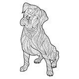 Wektorowa monochromatyczna ręka rysująca zentagle ilustracja boksera pies ilustracji