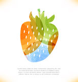 Wektorowa multicolor odosobniona jagoda. Truskawka Obrazy Royalty Free