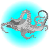 Wektorowa ośmiornica, Kraken/ ilustracji
