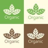 Wektorowa Organicznie liścia loga ilustracja Zdjęcia Royalty Free