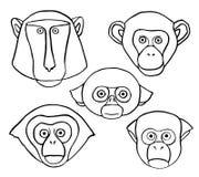 Wektorowa Ozdobna małpy głowa Zdjęcia Stock