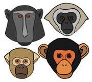 Wektorowa Ozdobna małpy głowa Zdjęcie Stock