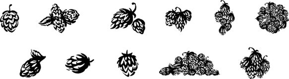 Wektorowa ręka rysujący chmielu emblemata ikony etykietki logo tła odcisku palca ilustracyjny biel ilustracja wektor