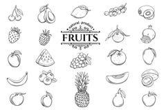 Wektorowa ręka rysować owoc ikony ustawiać ilustracji