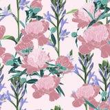 Wektorowa ręka rysująca nakreślenie ilustracja różowa peonia i fiołek kwitnie bezszwowego wzór ilustracji