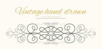 Wektorowa ręka rysująca rozkwita, teksta divider, graficznego projekta eleme Obraz Royalty Free