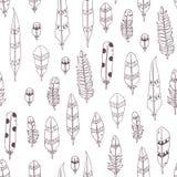 Wektorowa ręka rysujący bezszwowi wzory z piórkami Zdjęcie Stock