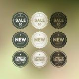 Retro odznaki kolekcja Fotografia Royalty Free
