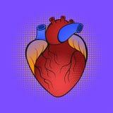 Wektorowa ręka rysująca wystrzał sztuki ilustracja serce Zdjęcia Stock