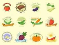 Wektorowa warzywo etykietki szablonu ikona royalty ilustracja
