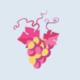 Wektorowa winorośl royalty ilustracja