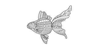 Wektorowa wizerunek ryba w dudling stylu goldfish dudling Zdjęcia Stock