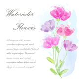 Wektorowa zaproszenie karta z kwiatami dla poślubiać, małżeństwo, urodziny, walentynka dzień pisze kwiaty ja obrazu obrazka akwar Zdjęcie Stock
