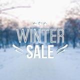 Wektorowa zima zamazywał ilustrację z śniegiem, drzewa Obrazy Royalty Free