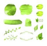 Wektorowe akwareli pustego miejsca ramy Ustawiać, roślina rysunki, Kwiecistego projekta elementy, Zielona farby tekstura, Eco poj ilustracja wektor