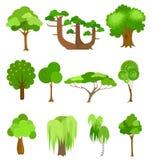 Wektorowe drzewo ikon ilustracje Prosty kreskówka styl ilustracja wektor