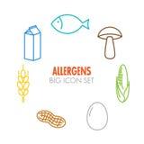 Wektorowe ikony dla allergens Fotografia Stock