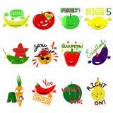Wektorowe osiągnięcie szkoły etykietki Set 16 wektorowych majcherów z owoc i warzywo ilustracji