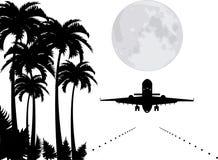 wektorowe palmy księżyc i samolot nad pas startowy, ilustracja wektor