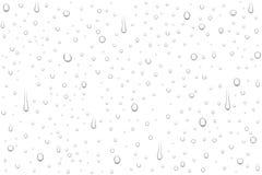 Wektorowe realistyczne wod krople na białym tle royalty ilustracja