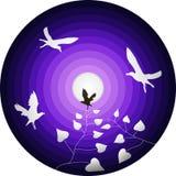 Wektorowe sylwetki czarny i biały ptaki i gałąź z liśćmi przeciw round abstrakcjonistycznemu fiołkowemu niebu i błyszczącej księż ilustracji