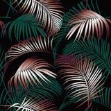Wektorowego bezszwowego pięknego artystycznego darkt tropikalny wzór Obrazy Stock