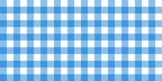 Wektorowego gingham pasiasty w kratkę powszechny tablecloth Bezszwowy biały błękitny stołowego płótna pieluchy wzoru tło z natura Fotografia Stock