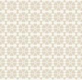 Wektorowego Kwiecistego koronkowego rocznika nieociosany bezszwowy wzór Obraz Stock