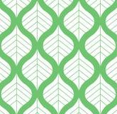 Wektorowego liścia wzoru Zielona i Biała tło ilustracja Obraz Royalty Free