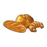 Wektorowego nakreślenia bochenka biały chleb, Croissant set royalty ilustracja