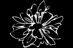 Wektorowego nakreślenia abstrakcjonistyczny kwiat Zdjęcia Royalty Free