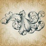 Wektorowego rocznika barokowy kwiecisty ślimacznicy wzór ilustracji