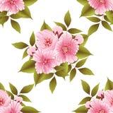 Wektorowego Sakura kwiatu bezszwowy deseniowy element Elegancka czereśniowego okwitnięcia tekstura dla tło ilustracji