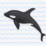 Wektorowego wielorybiego ilustracyjnego morskiego ssaka północy powierzchni humpback głębokiego oceanu morski ssak Zdjęcie Royalty Free