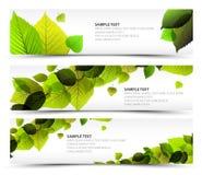 Wektorowej Świeżej wiosna horyzontalni sztandary Fotografia Stock