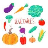 Wektorowej żywności organicznej kolorowi warzywa ustawiający Ilustracja Wektor