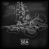 Wektorowej eleganci rysunkowy sailfish przy blackboard royalty ilustracja