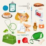 Wektorowej grafiki ikona ustawiająca weterynarza i zwierzęcia domowego dostawy Obrazy Stock