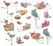 Wektorowi śliczni ptaki royalty ilustracja