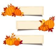 Wektorowi beżowi sztandary z pomarańczowymi baniami i jesień liśćmi Zdjęcie Royalty Free