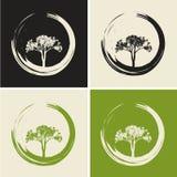 Wektorowi drzewa Ustawiający Ilustracyjny Naturalny Płaski pojęcie Obraz Stock