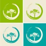 Wektorowi drzewa Ustawiający Ilustracyjny Naturalny Płaski pojęcie Obrazy Royalty Free