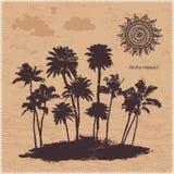 Wektorowi drzewka palmowe ilustracyjni Zdjęcia Stock