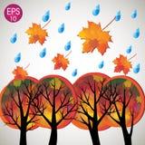 Wektorowi jesieni drzewa z spada wod kroplami i liśćmi Obrazy Stock