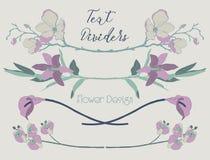 Wektorowi Kolorowi Kwieciści tekstów Dividers Kwiatu projekta elementy Zdjęcia Royalty Free