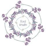 Wektorowi Kolorowi Kwieciści wianki Kwiatu projekta elementy Fotografia Royalty Free