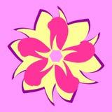 Wektorowi kwiatów płatki różni kształty Fotografia Stock